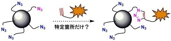 0 selectiveconjugation.jpg