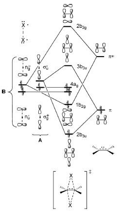 12 反応機構協奏的rev転載.jpg