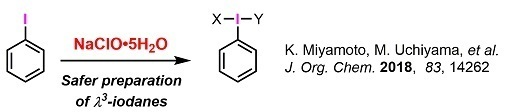 2018Year 02 Reagents02iodine2.jpg