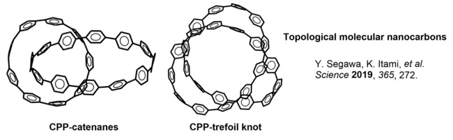 2019oftheyear01Structure12CPPtopo.jpg