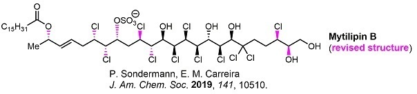 2019oftheyear03TotalSynthesis03Carreira2.jpg