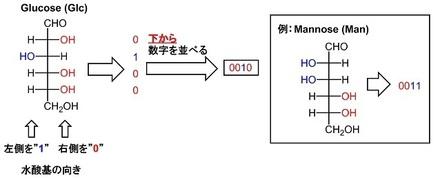 2進法で定義.jpg