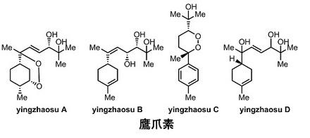 3 yingzhaosu.jpg