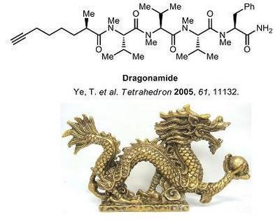 6 dragonamide.jpg
