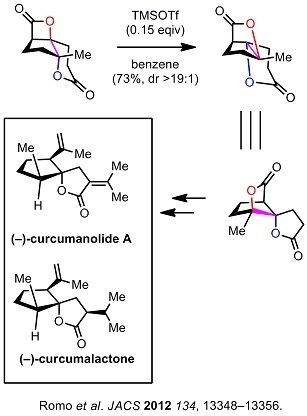 9 dyo Romo synthesis.jpg