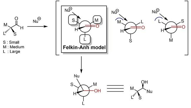 Felkin-Anh01.jpg