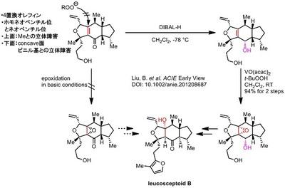 Liu total synthesis.jpg