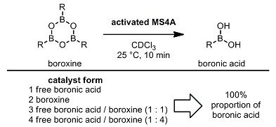 MS4A boroxine experiment.jpg
