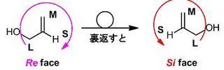 ReとSi面.jpg