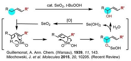 SeO2酸化mech.jpg