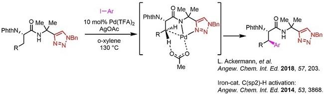 TriazoleC-H2.jpg