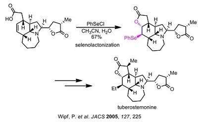 Wipf tuberostemonine selenolactonization.jpg