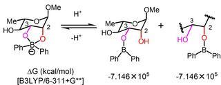 boric acid 4.jpg