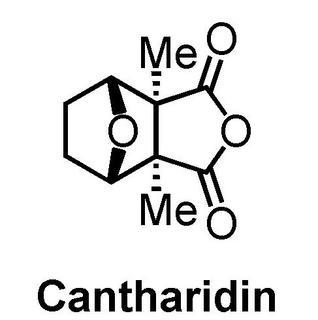cantharidin.jpg