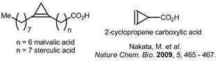 cyclopropene化合物.jpg