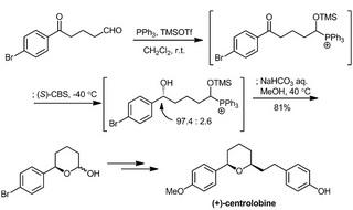 fujioka synthesis centrolobine.jpg