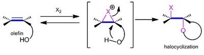 halocyclization.jpg