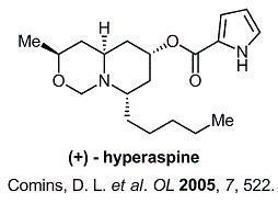 hyperaspine.jpg