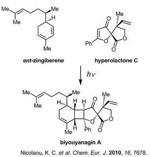hyperolactone C.jpg