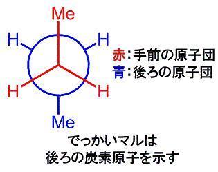 newman 解説.jpg